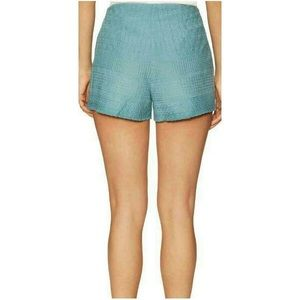 Free People Shorts - Free People High Waisted Embroidered Shorts
